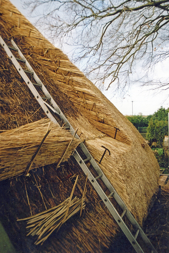 Inside a Standard Thatched Roof