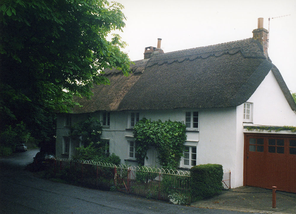 Thatch Looking New