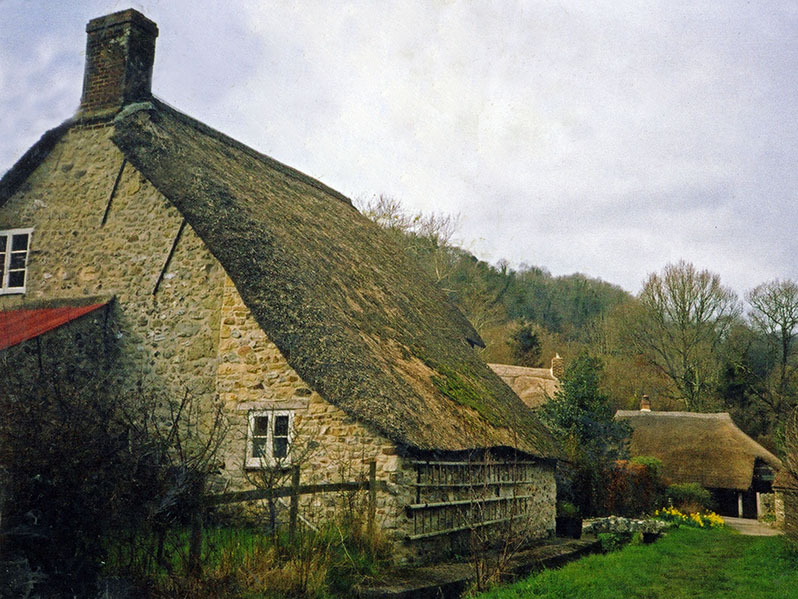 Long Roofed Thatch
