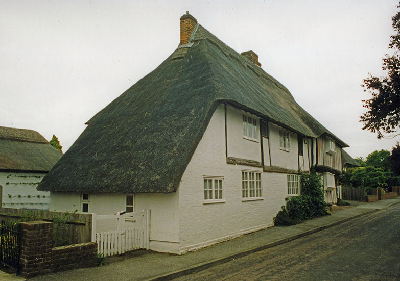 Long Roofed Thatch 2