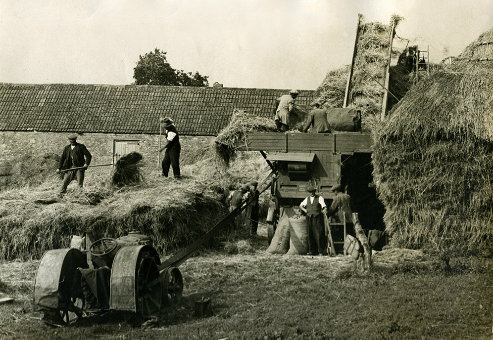 Thresing in surrey Fordson tractor