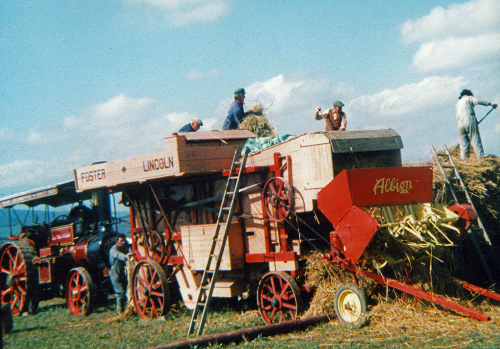 Tresher & traction engine