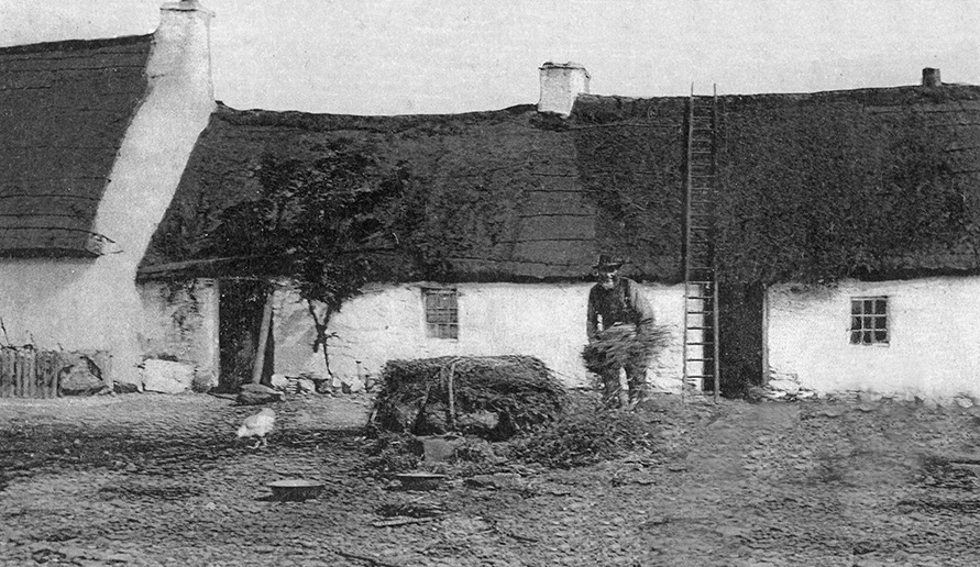thatching Ballantrae in Ayrshire