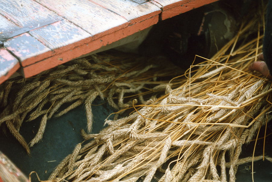 thatch reed comber detail 2