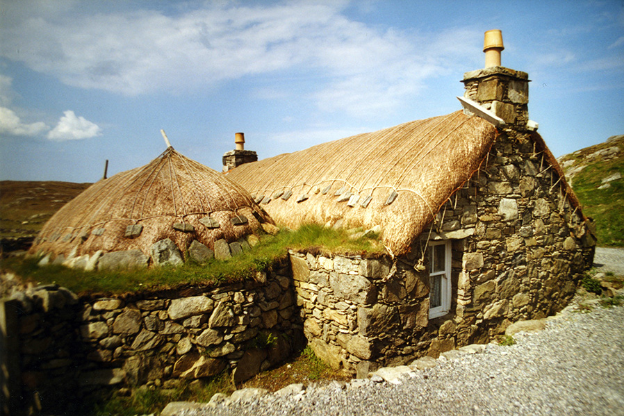 Barley Straw Isle of lewis