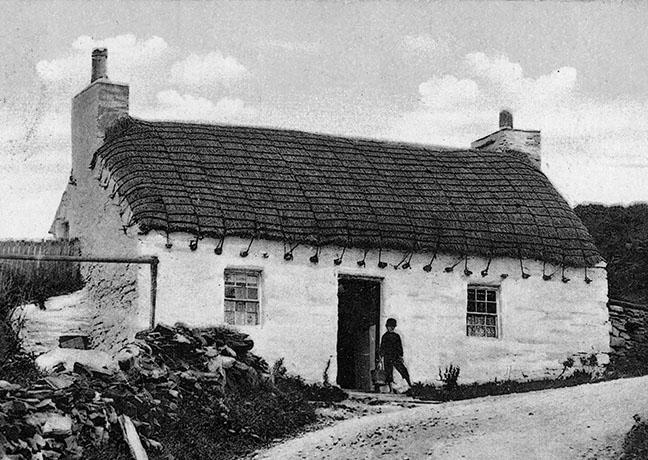 rpoe thatch isle of man