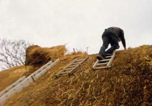 thatch hanging ladder