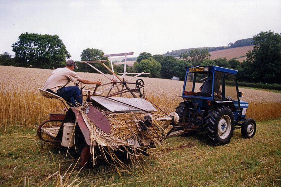 Thatch harvest binder 2