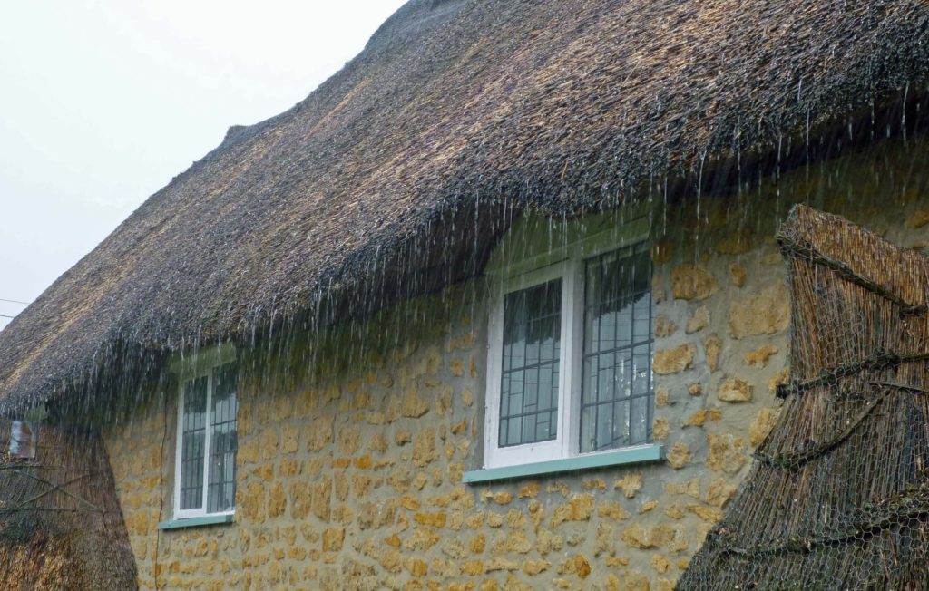 thatch in a storm