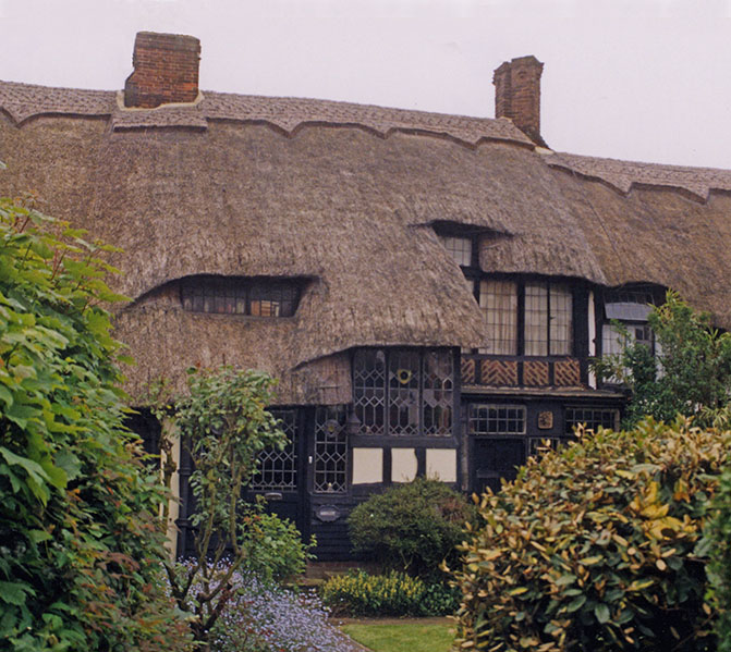 Thatched Features Introduction Thatching Info Com