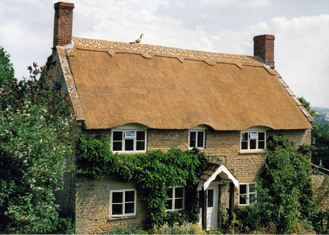 thatch at south cadbury somerset