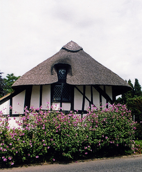 thatch at lingfield surry