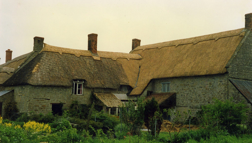thatching at wales queen camel somerset