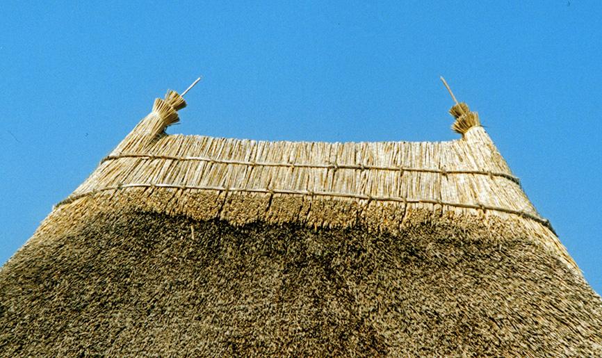devon thatch