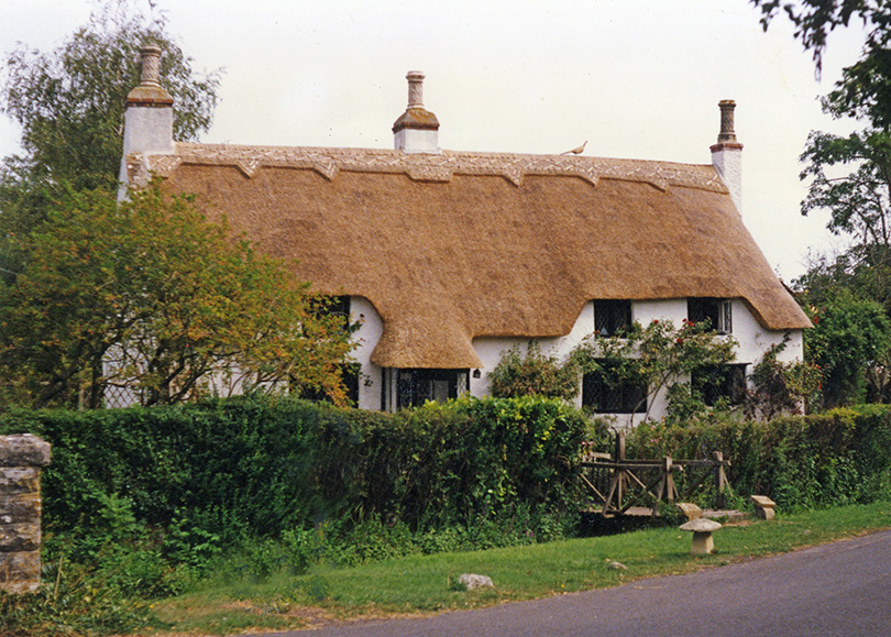 thatch at long sutton somerset