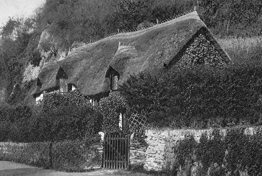 thatching devon