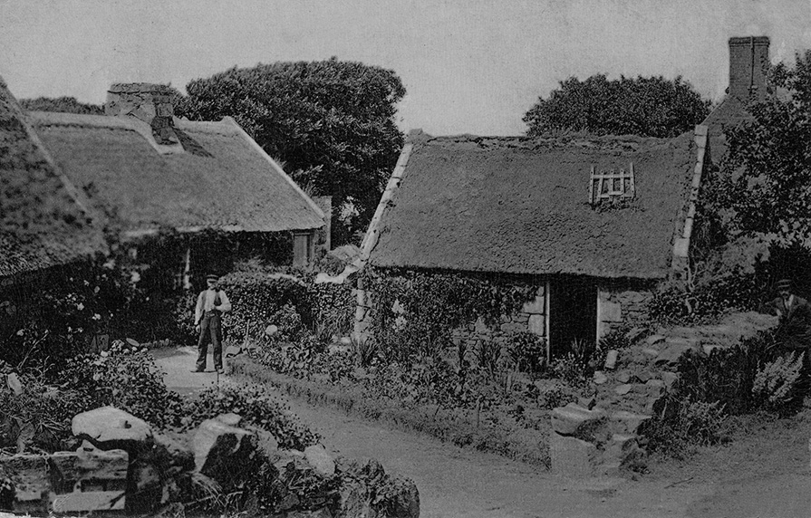 thatch sark channel islands