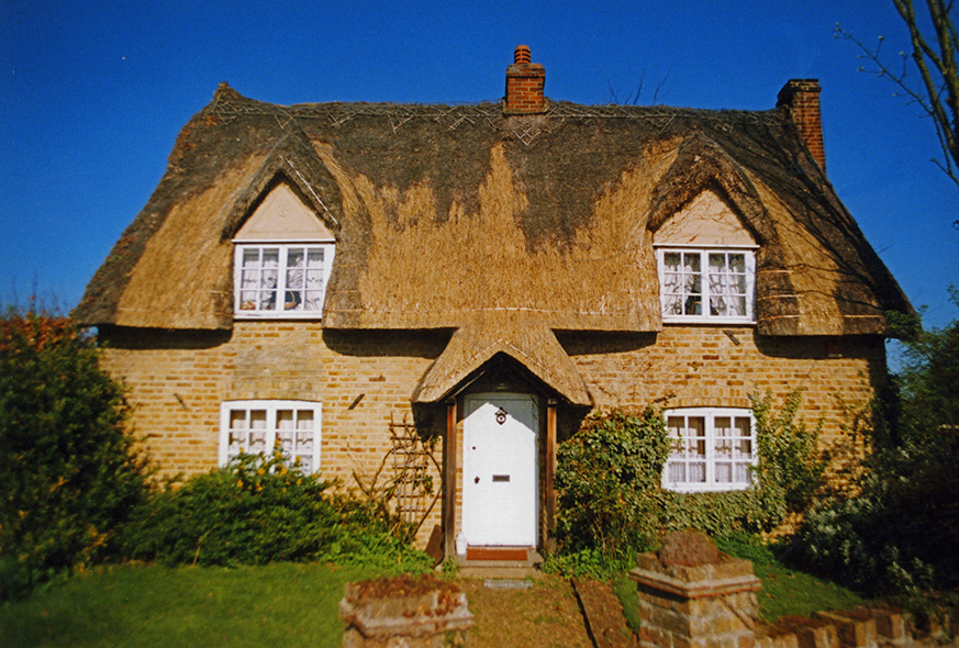 thatch matching green essex