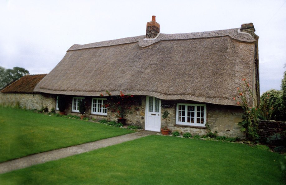 thatching torkshire