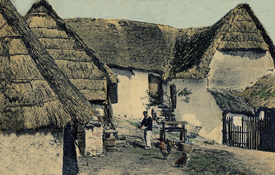 thatch normandy