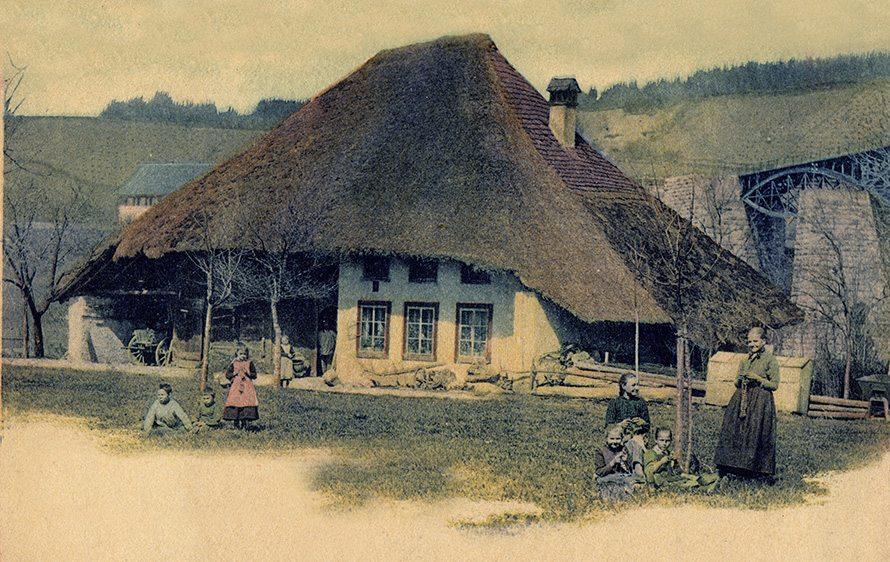 thatch switerland