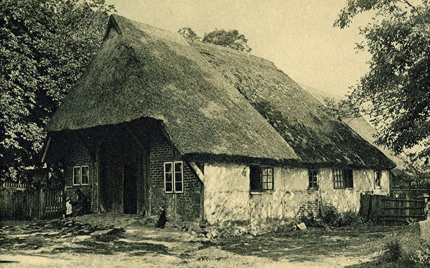 thatch germany