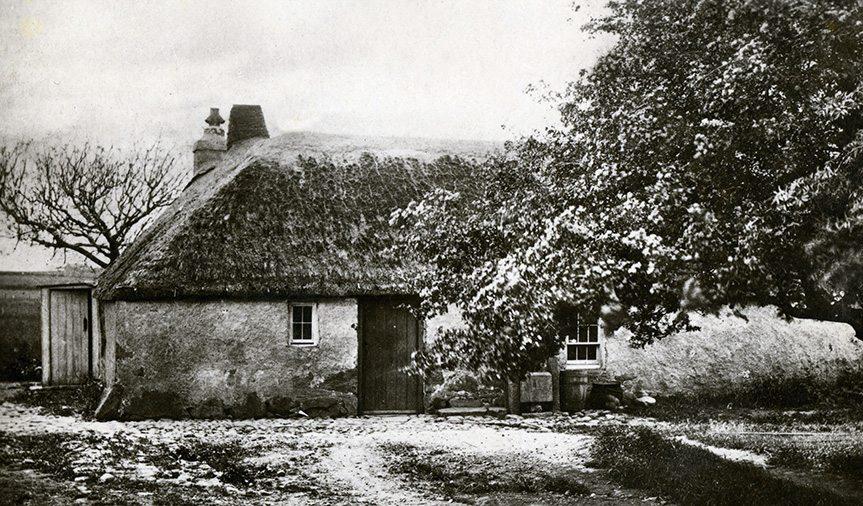 thatch aberdeenshire scotland
