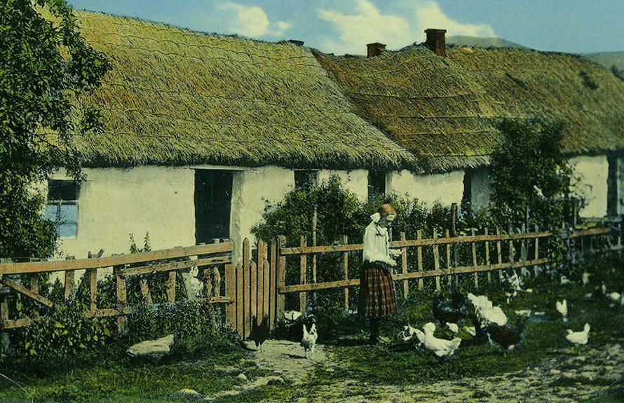 thatch scotland