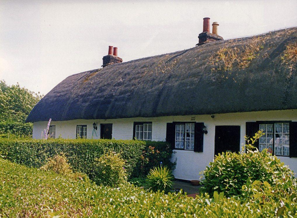 thatching cheshire