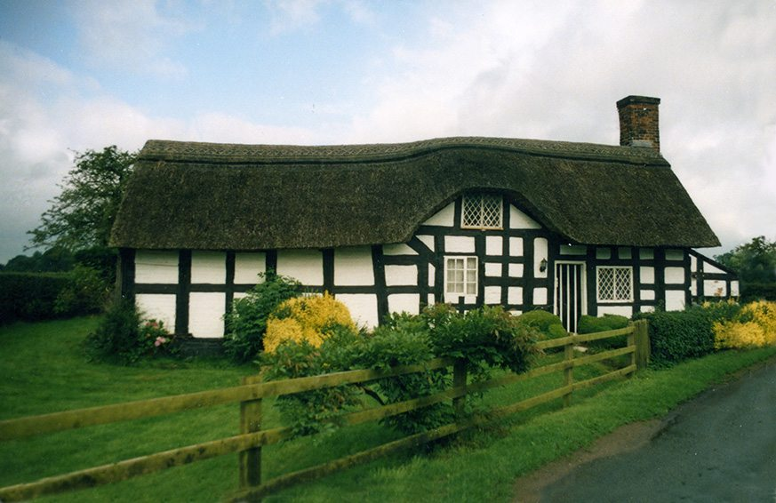 thatch cheshire