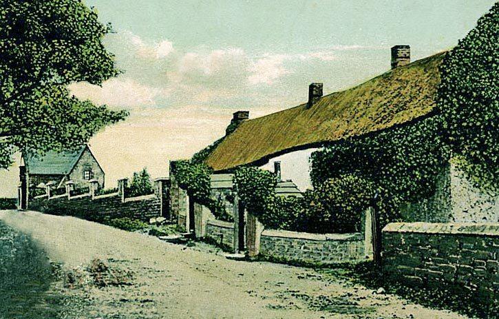 thatch cumbria