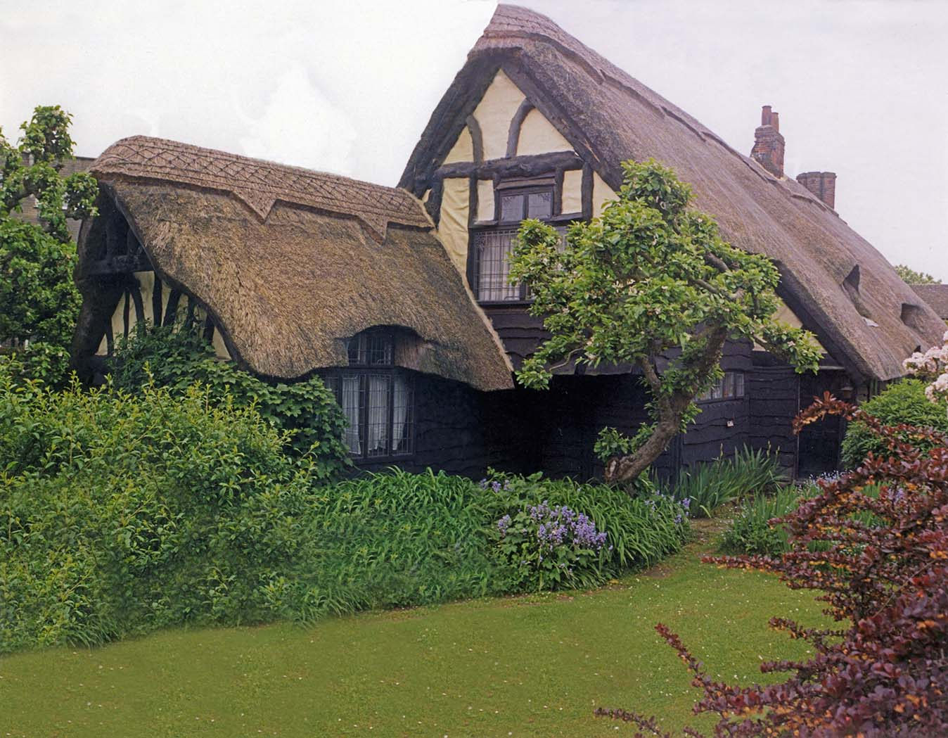 thatch london
