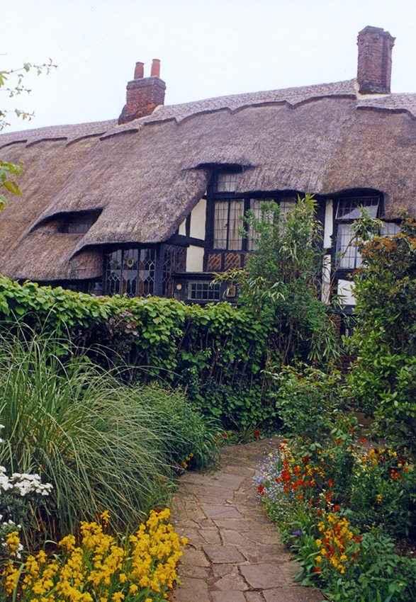 thatch middlesex