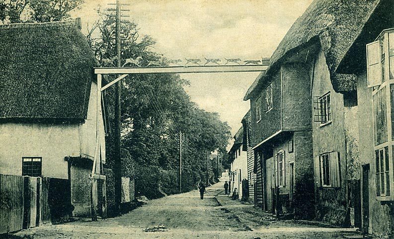 thatch hertford shire england