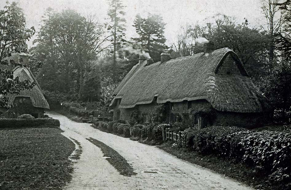 thatching engaland
