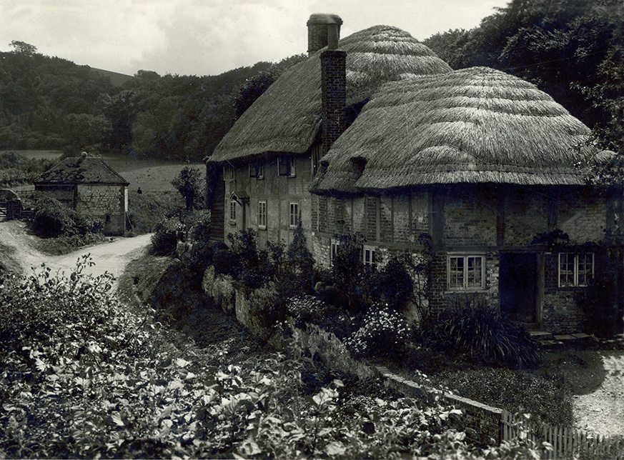 thatch sussex