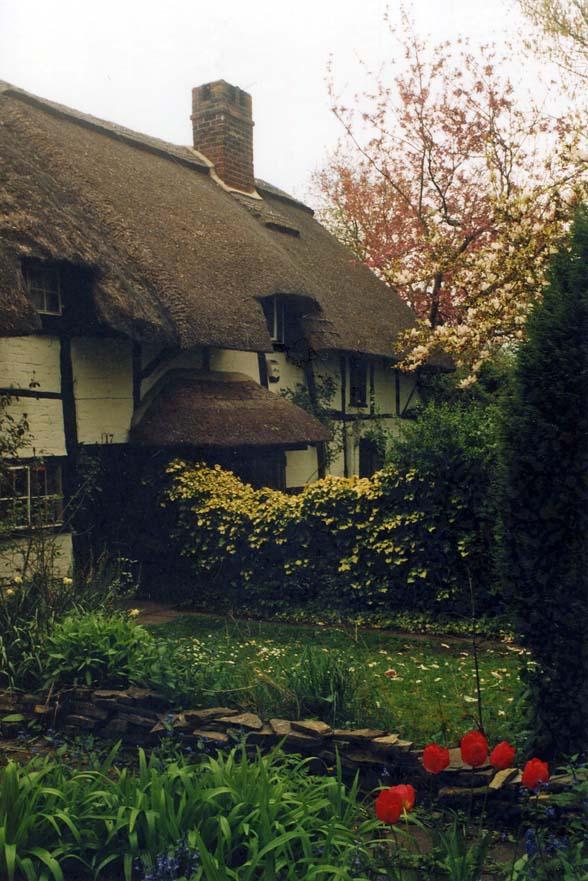 warwickshire thatching