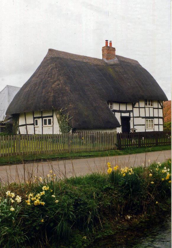 thatch berkshire
