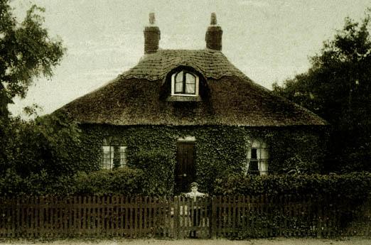 thatch london