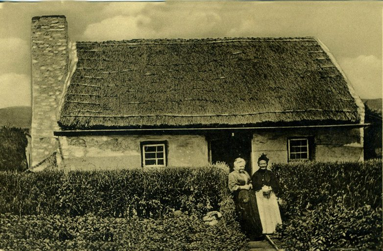 thatching  wales