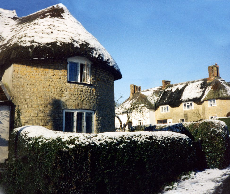 thatching milborne port