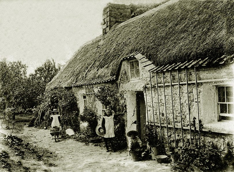 thatch channel islands