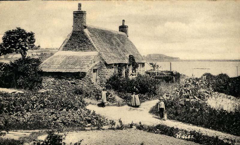thatch channel islands