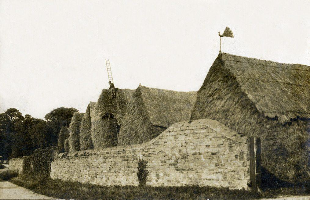 thatch history