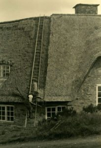 devon thatching