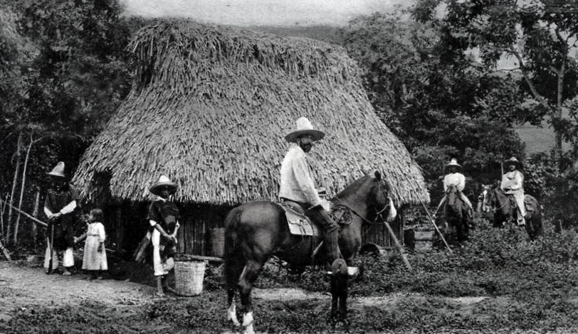 thatch mexico