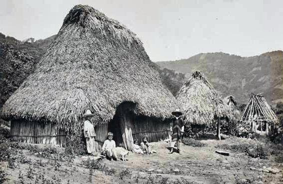 thatching mexico
